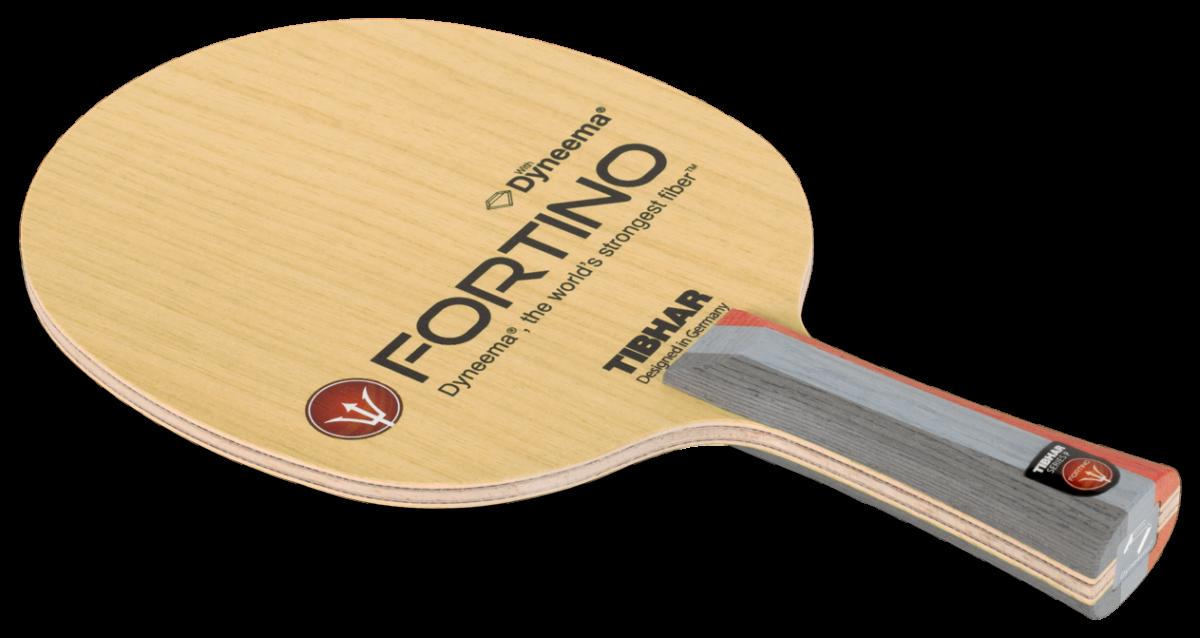 Fortino_Performance
